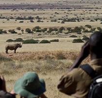 Wilderness Safaris erfolgreiche Partnerschaften mit Einheimischen